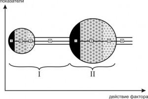 Принципы исследования функциональных возможностей кардиореспираторной системы