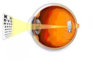 Принципы исследования функциональных возможностей зрительного анализатора